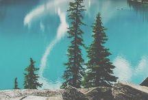 Magg Nature