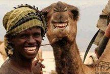 smilecommunity / Onze smile :) wat is volgens jou een magische smile...