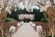 A Wedding Worthy of Dreams / Breathtaking, beautiful, magical fairytale.  Stun me, surprise me, make me laugh in delight.  Wedding ideas worthy of your love and your dreams.