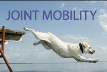 Joint Mobility / Feed Fish and See the Difference in your dog's Joint Mobility