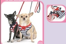 For my Lupe / Things I see and want to get for my sweet terrier mix, Lupe, or have bought for her! Yay spoiling my furbaby!