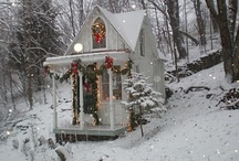 Christmas Seasons / by Lori Trulio  Donkersloot