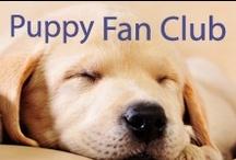 Fish4Puppies Fan Club