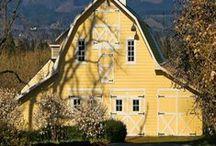 Barns and Farms / by Nina Koontz