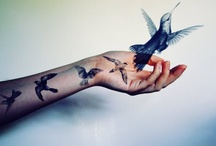 Bird and Feather Tattoos / Tattoos that focus on birds or feathers / by Kristy Yager