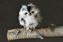 Owls / Olws are one of my favorite kind of animals