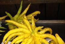 Fruits,Veggies,Seeds,Herbs,Nuts <3