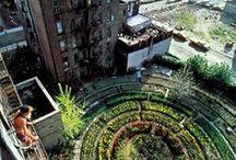 A0,0.Urban Farming & Gardening