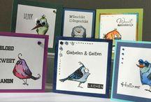 Crazy birds, Cats and Dogs / Kaarten met crazybirds stempels