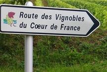 VIGNOBLES ET VINS DE FRANCE / by Francoise PERDRIER