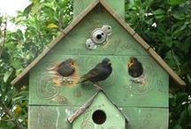 Birdhouses, Cages, Baths, Feeders / by Vickys Arts and Crafts
