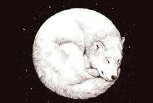 Hound: A Dogerman Winter