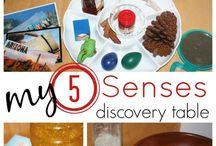 Five senses / Activities and resources for teaching five senses with preschoolers.