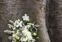 Weddings: Spring bouquets & flowers / Bouquets that to me have a springtime vibe.
