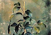 Plants... / by Antonio Rodríguez