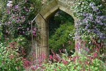 passaggi in giardino