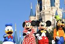 Wonderful Walt Disney World
