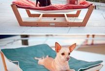 Fur Babies / Thing I want to make for my fur babies.