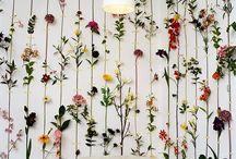 Behang / wallpaper