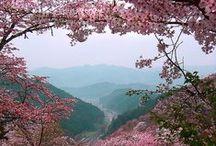Favorite Places & Spaces / かくも素敵な この地球に 生かされている事に、もっと謙虚に そして感謝♡^ ^