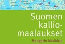 SKS:n kevään 2013 kirjat