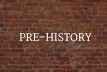 For Teachers: Pre-History / Pre-history teacher aids, photos, and infographics. / by World Treasures