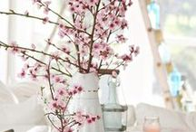 Pretty in Pastels / Pastel colour theme