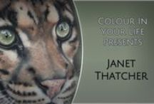 1106 Janet Thatcher / https://www.colourinyourlife.com.au/tv-show-ep/janet-thatcher/