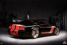 Pure mustangs / Mustangs / by SEMY GARAGE