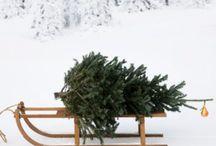 Kerstversiering met een slee / En andere slee versiering