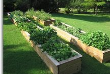 Raised Garden Beds - Grow Boxes / Raised garden beds for any yard.  Perfect for saving space, cutting down on weeds, and producing lots of veggies!