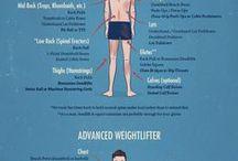 Gym Information/Workouts / gym
