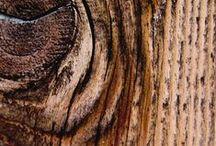 Achtergronden Hout / achtergronden met hout afbeelding