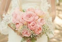 WEDDING / My dream wedding