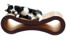 Well Designed Cat Products  / Cat products that succeed in being functional and aesthetically pleasing, helping keep both cats and cat parents happy!