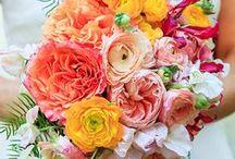 Carmen's Wedding Inspiration / my wedding Inspiration
