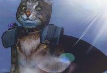 The Really Fat Cat (✪ฺܫ✪ฺ)