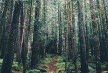 ~ nature