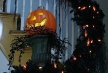 Halloween / by Robin Allison
