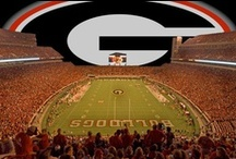 Go Dawgs / by Megan Strong