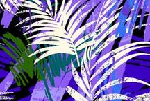 Tropical / by Heidi and Hallbery