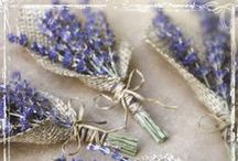 Boutonnieres / We can't forget the groom! It's the big day for BOTH of you!!!