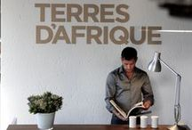 Our Shop and our products. / Terres d'Afrique's flagship store is downtown Joburg in the Maboneng district.