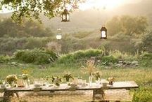 Wedding: decorations, details, food, drink / ecological, lanterns, white and wild flowers, scandinavian indian summer, candles, herbs.