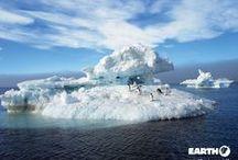 Antartide / Un'esperienza straordinaria in Antartide! Una aerocrociera unica al mondo, in aereo da Punta Arenas sorvolando Capo Horn e il Canale di Drake per atterrare alla base cilena delle isole South Shetland da dove avrà inizio la navigazione lungo la Penisola Antartica.