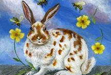 Rabbits & Hares / Too hip to hop!