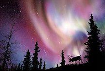 Polarlichter / Himmelslichter