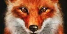 Martina fox illustration