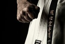 Martial Arts & Martial Artists / Martial Arts