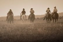 Life on the Range / by Cynthia Coblentz